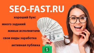 seo-fast.ru - обзор сайта и отзыв на серфинг