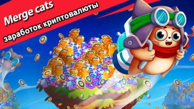 Photo of Merge Cats — обзор заработка криптовалюты в игре для телефона
